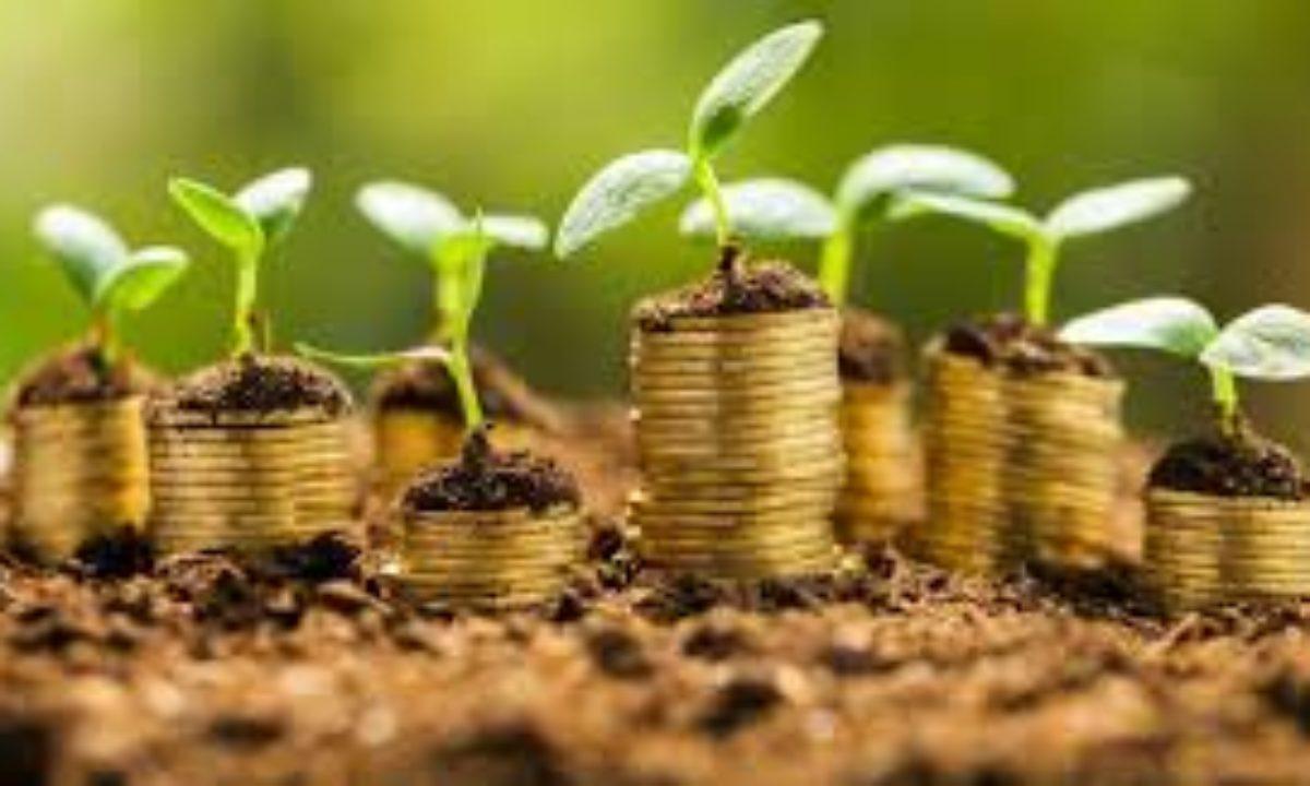 Actividades económicas: primaria, secundaria y terciaria - Blog de Opcionis